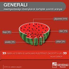 Mezőgazdasági növénykárok kárfajták szerint - 2012    www.generali.hu