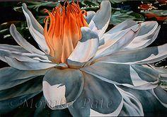 Waterlily IV by Monika Pate Watercolor ~ 22 x 30