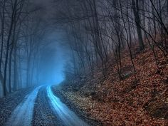 misty day in the Blue Ridge Mountains images - Google Search