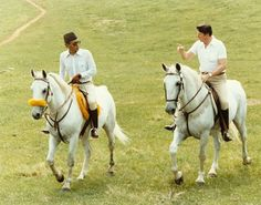 Barb Horses of Morrocco .With King Hassan II of Morocco