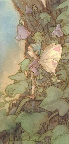 ≍ Nature's Fairy Nymphs ≍ magical elves, sprites, pixies and winged woodland faeries - James  Browne