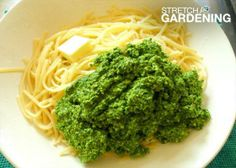 There's more to life than basil pesto. Re-imagine this tasty dish made with kale and fresh pasta. So good for you! Click through for the recipe by Diane LaSauce (@Diane Haan Lohmeyer LaSauce).