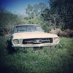 Mustang #vintage. Photo by @robrash Instagram