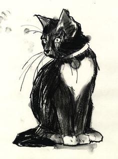 cat illustration by Jonny Ruzzo