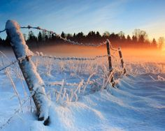 Beautiful Photo of snowy Canada
