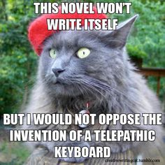 This cat understands all of you writers out there.
