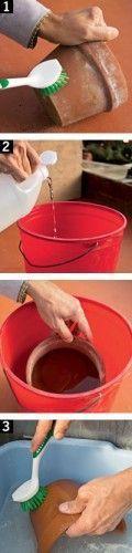 Dicas limpar vasos de barro 1