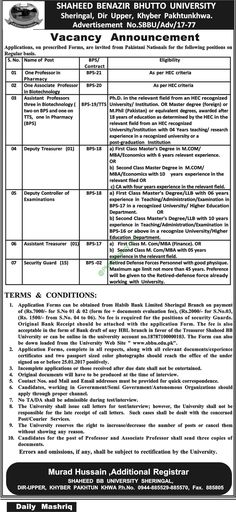 NTS Elementary Education Foundation EEF KPK Jobs Application Form - da form