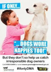 If only dogs wore nappies too - Charnwood Council Dog Wear, Dog Owners, Campaign, Posters, Dogs, Pet Dogs, Poster, Doggies, Billboard