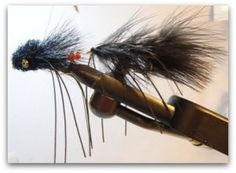 Sex Dungeon - Is it th Best Brown Trout Fly for Spawning Season????