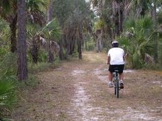 Old Marco Rd biking trails found at the Collier-Seminole State Park. Great things to do in #naples . #nature. #biking