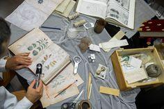 A fabbricare il manoscritto per motivi di spionaggio contro la Repubblica Veneziana sia stato il Filarete, Antonio Averlino di Pietro, celebre scultore e architetto...