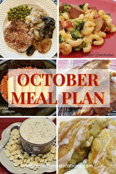 The October Meal Plan means Fall Foods like Crockpot and Casserole recipes as well as Soups! Apple recipes begin to make an appearance. Cheesy Sausage Pasta, Sausage Tortellini, Fun Easy Recipes, Fall Recipes, Apple Recipes, Crockpot Recipes, Meal Planning Board, Homemade Vegetable Soups, Rotisserie Chicken Salad