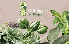 Entschlackung und Ausleitung nach Hildegard von Bingen Kraut, Alternative, Green, Plants, Detox, Flower Of Life, Natural Remedies, Natural Medicine, Medicinal Plants