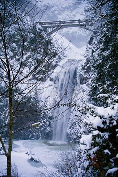 """This pic says its """"Winter, Multnomah falls, Oregon"""" but we've never seen it look like that. Have you?"""