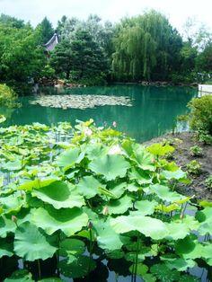 Montreal Botanical Gardens - Montreal, Quebec, Canada