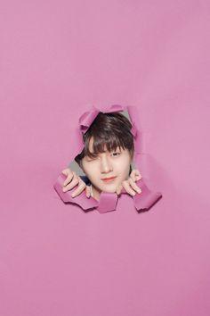 Produce x 101 wallpaper Yohan Kim, Cute Lockscreens, Woollim Entertainment, Produce 101, Great Friends, Boyfriend Material, Aesthetic Wallpapers, Boy Groups, Photo Sessions