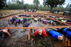 Tough mudder - some Seattle employees participated in this years event - Insane obstacle course - yes that is barbed wire people are crawling under and it is electrified!