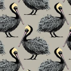 Pelican Taupe Wallpaper