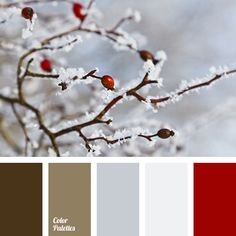 Image result for navy blue and deep red interiors