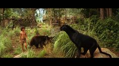 Happy ending Mowgli returns to his wolf family and animal friends