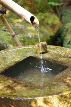 Water trickles gently from a bamboo pipe into a stone bowl.