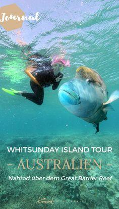 Wusstet ihr, dass schon ein paar Mal Leute über dem Great Barrier Reef bei einer Whitsunday Islands Tour vergessen wurden? Da schnorchelt man so ahnungslos mitten im Meer, am Rande endloser Untiefen und dann ist da auf einmal nichts mehr. Kein Boot, kein Land und auf einmal wird einem die Bedrohlichkeit des Ozeans schmerzlich bewusst.