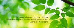 Michel De Montaigne Michel De Montaigne, Bucket, Herbs, Wellness, Let It Be, Thoughts, Quotes, Nature, Plants
