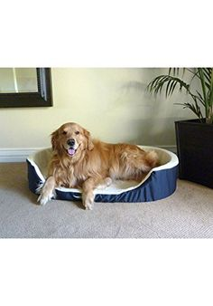 36x24 Blue Lounger Pet Dog Bed By Majestic Pet Products Large >>> Want additional info? Click on the image.