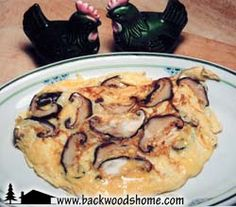 Shiitake mushrooms by Linda Gabris.  Not only are mushrooms delicious, but they also have been found to have a positive impact on cholesterol, high blood pressure, cancer, heart disease, AIDS, herpes, and other viral infections.  Read this article to find out more and get a few great recipes while you're at it!