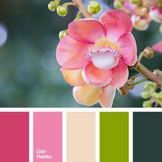 Color Palette #2934 More