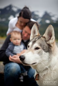 Photo Props | Pets & The Owner Who Love Them | Husky | Portraits | Family Photography Pose Ideas