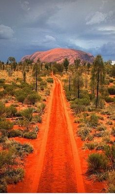 The red road to Uluru in Australia