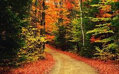 Autumn Scenery Wallpaper Wallpapers) – Wallpapers and Backgrounds