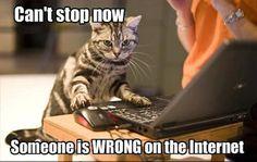 Discussie-op-internet-winnen