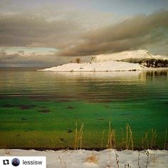 Grønt er årets farge. #reisetips #reiseblogger #reiseliv  #Repost @lessisw with @repostapp  Clear water in green color Location: Gressholmene/Harstad #northernnorway #ig_nordnorge #nature #natura_love #fever_natura #earthislimit #tv_allnature #h20_natura #best9 #placestotravel_s #landscape_lovers #norsketurbilder #loves_norway