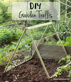 diy garden trellis - how to build a cucumber trellis #growingcucumbersvertically