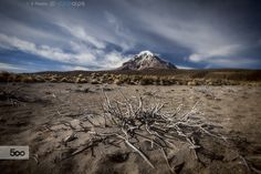 Winter in Sajama by Roberto Sysa Moiola on 500px