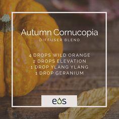 Autumn Cornucopia Essential Oil Diffuser Blend