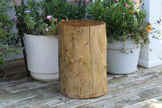 Love the rustic log stool. Log Stools, Stump Table, Elm Tree, Pattern Making, Outdoor Furniture, Display, Rustic, Plants, Painting