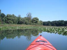 Long Lake, Union Michigan