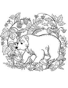 Bear coloring page from Brown Bears category. Select from 31927 printable crafts of cartoons, nature, animals, Bible and many more. Blank Coloring Pages, Pattern Coloring Pages, Coloring Book Art, Animal Coloring Pages, Free Printable Coloring Pages, Christmas Coloring Sheets, Pyrography Patterns, Colorful Drawings, Painting Patterns