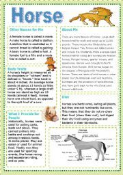 horse  worksheets | Vocabulary worksheets > The animals > The horse > **Horse **