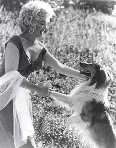 Marilyn Monroe & Lassie in 1952