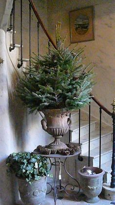 Is your Christmas tree the centerpiece of your holiday decorating plans? Why limit yourself to just one tree!  This year try decorati...