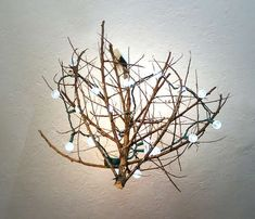 DIY Chandelier:Did you know chandeliers occur in nature? Thanks to the Fibonacci sequence you can easily find dead twigs and tumbleweeds with graduated tiers resembling a chandelier. With a little love and some tweaking you can easily have a sexy centerpiece to grace your dining room. Layer on some string LEDs and you've got a low energy light source as well! (original source)