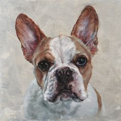French Bulldog Art, Custom Dog Portrait Oil Painting on Canvas. Pet Portrait commission by Heather Lenefsky Art, Dog Artist. Custom Dog Portraits, Pet Portraits, Painting Portraits, Painting Art, Animal Paintings, Animal Drawings, French Bulldog Art, Dog Artist, Cute Bulldogs