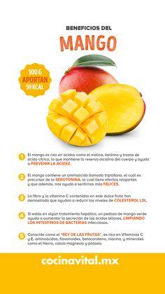 El mango es una fruta con grandes propiedades nutritivas que lo hacen más atractivo para su consumo; disfrútalo en temporada y benefíciate con buena salud.