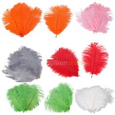"7-10"" inch 10 Pcs Ostrich Feathers Multi-Colors $3.99 make our own pens"