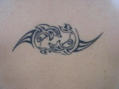 dolphin Tattoos | celtic dolphin tattoos1 Dolphin tattoo design, art, flash, pictures ...